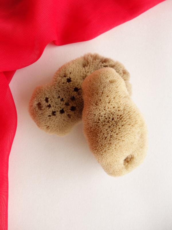 Esponja menstrual natural