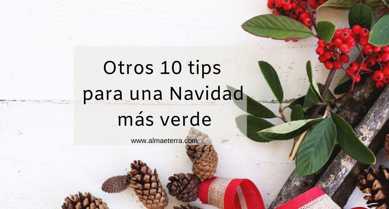 16_Otros 10 tips para una Navidad más verde