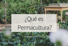 permacultura. agroecología. agricultura regenerativa. biodiversidad