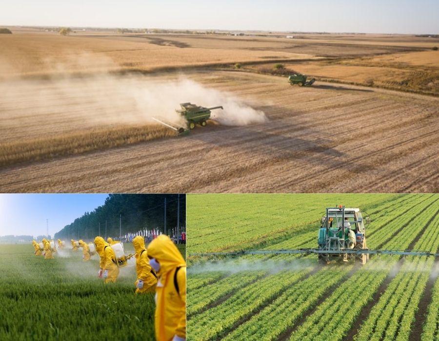 Permacultura vs pesticidas, monocultivo, agotamiento de recursos. Recuperación de la tierra