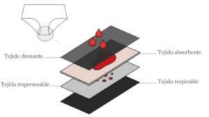 Tecnología de absorción bragas menstruales